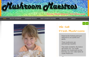 Mushroom Maestros homepage screen capture